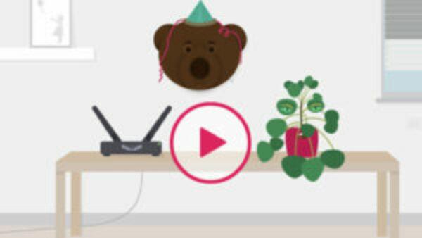 De beer, de router en de pannenkoekenplant